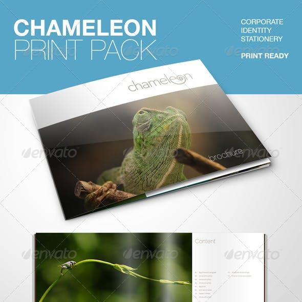 Chameleon Print Pack