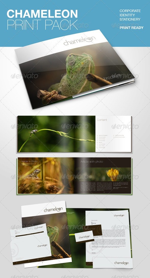 Chameleon Print Pack - Stationery Print Templates