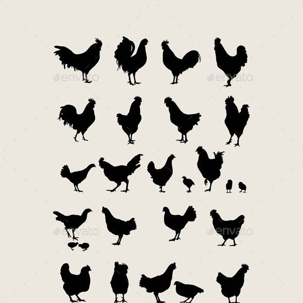 Chicken Silhouettes