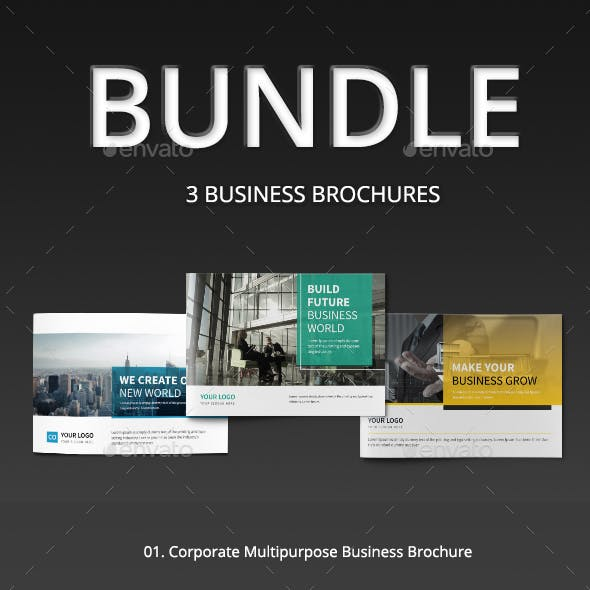 A5 Corporate Business Brochure Bundle