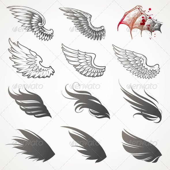 Vector Set of Decorative Wings