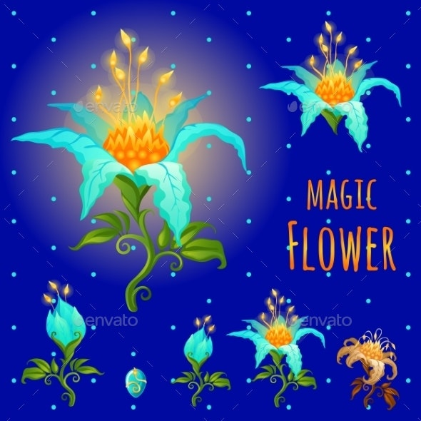 Blue Glowing Magic Flowers, Stages Of Flowering - Flowers & Plants Nature