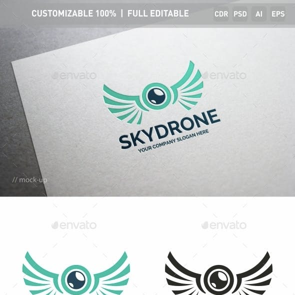 Sky Drone Logo Template