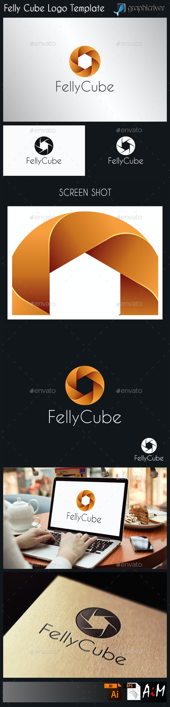 Felly Cube - Circle Logo - Abstract Logo Templates