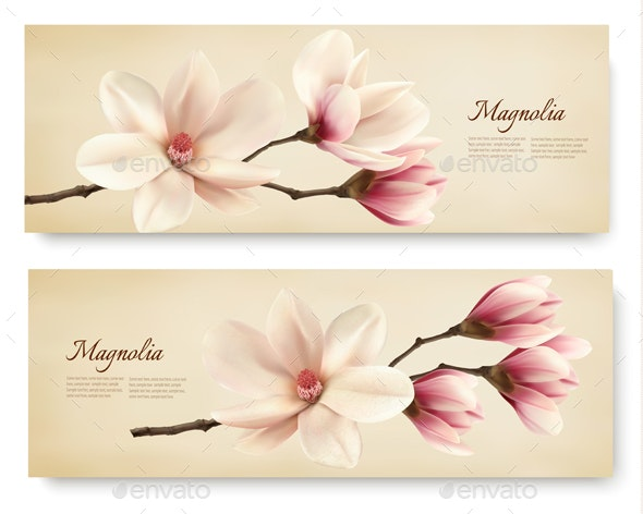 Two Magnolia Banners - Flowers & Plants Nature