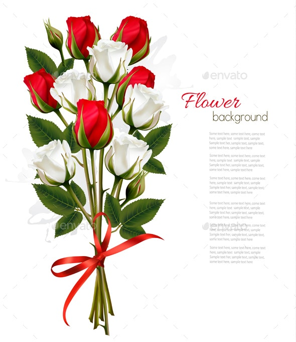 Bouquet of Red and White Roses - Flowers & Plants Nature