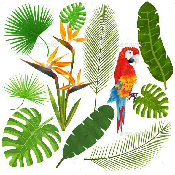 Tropical Leaves, Flowers and Macaw Vector