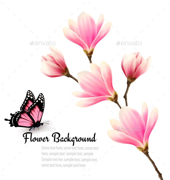 Blossom Branch of Pink Flowers and Butterfly - Flowers & Plants Nature