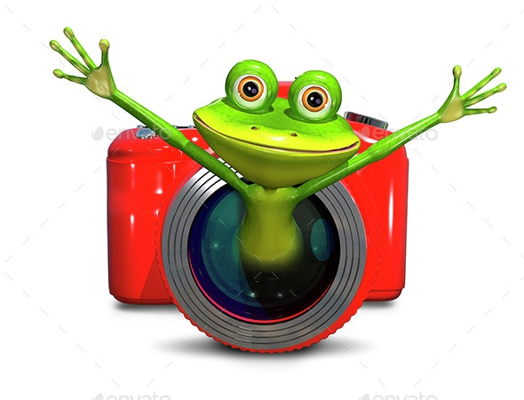 Frog in the camera   - Objects 3D Renders