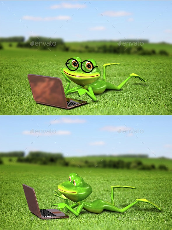 Frog with a laptop on the grass - Characters 3D Renders