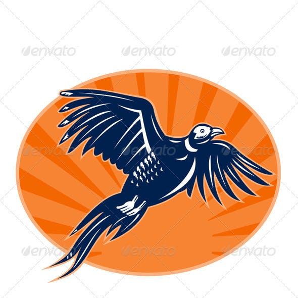 Pheasant Bird Flying Retro Style
