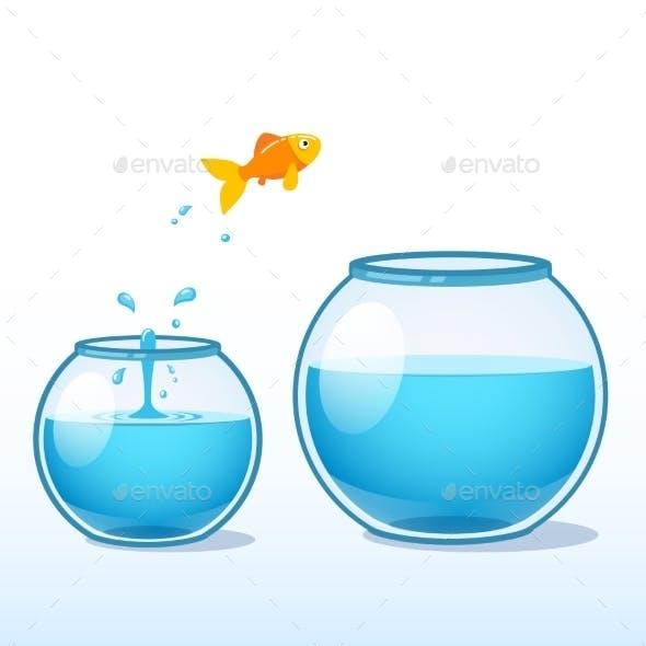 Goldfish Making Leap of Faith to a Bigger Fishbowl