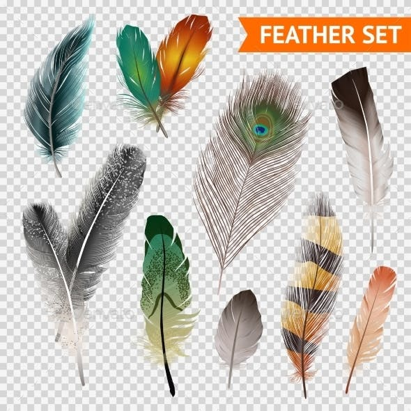 Feathers Realistic Set