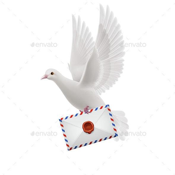 Dove white - Animals Characters