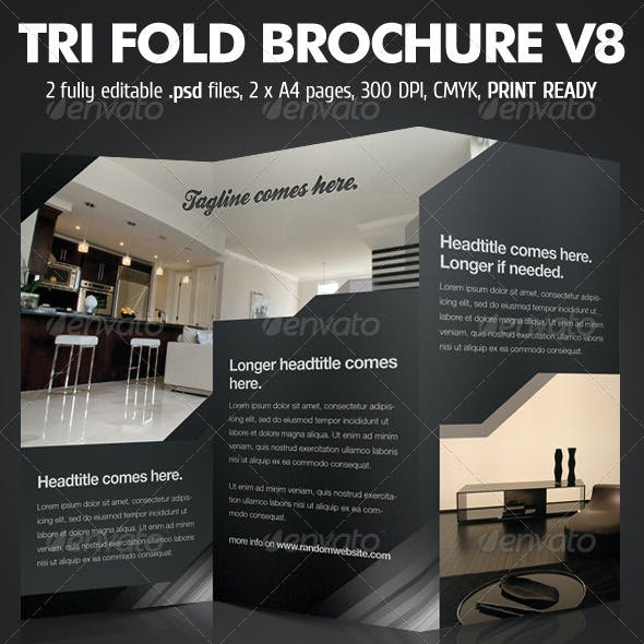 TriFold Brochure V8