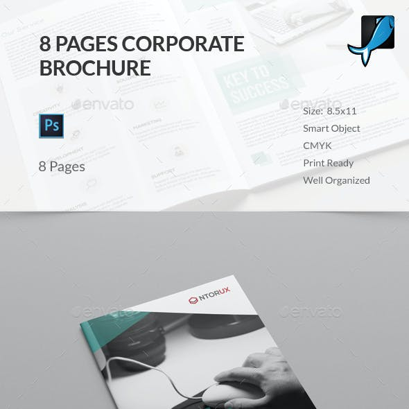 8 Page Brochure