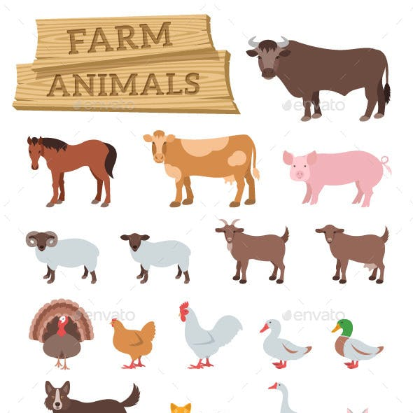 Domestic Farm Animals Flat Illustrations