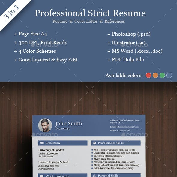 Professional Strict Resume