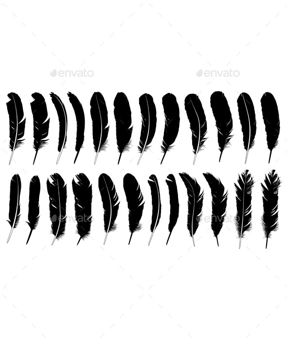 Set of Different Feathers  - Organic Objects Objects