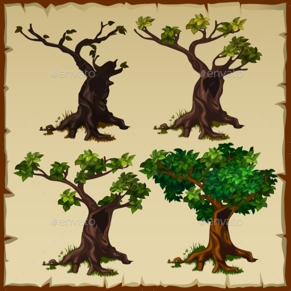 Four Images Of The Tree With Leaves And Without - Flowers & Plants Nature