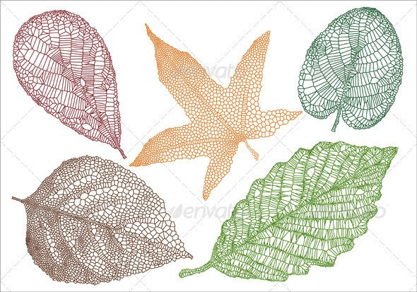 Textured Leaves, Vector Set - Flowers & Plants Nature