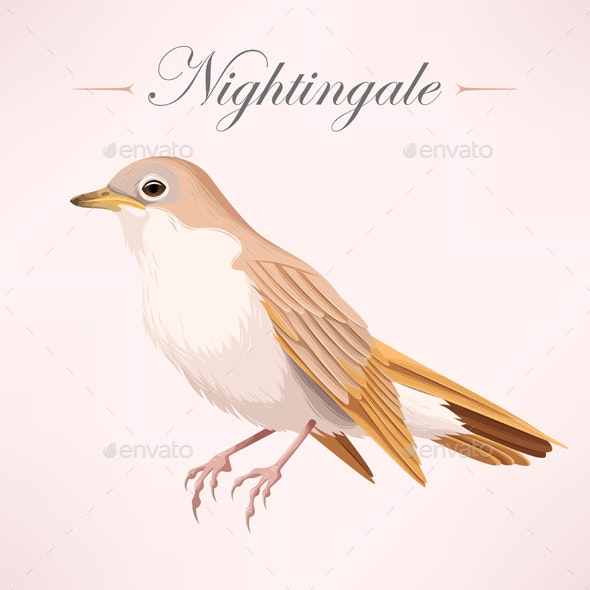 Vintage Nightingale - Backgrounds Decorative