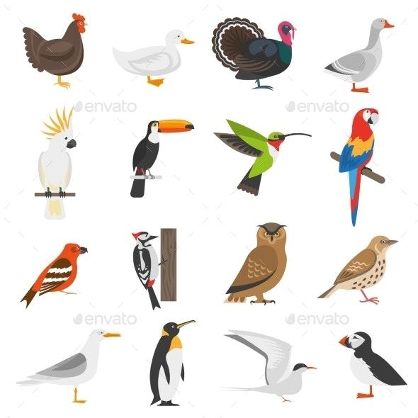 Bird Flat Color Icons Set - Decorative Symbols Decorative