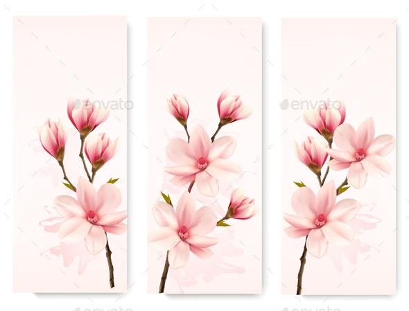 Three Magnolia Banners - Flowers & Plants Nature