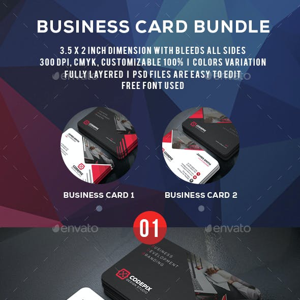 Development Busines Card 2in_1