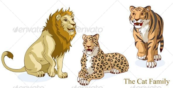 The Cat Family - Animals Characters