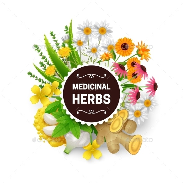Medicinal Herbs Plants Wreath Flat Frame - Flowers & Plants Nature