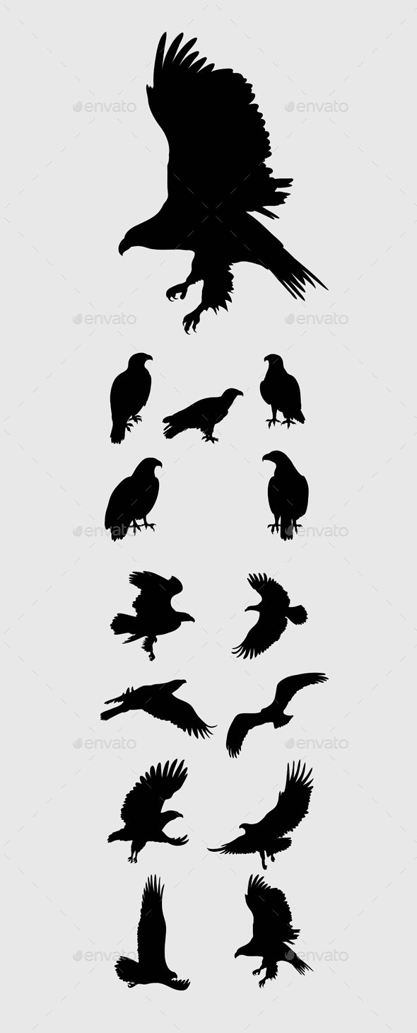 Eagle Set Silhouettes - Animals Characters