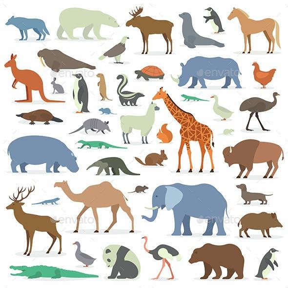 Big Animals Set