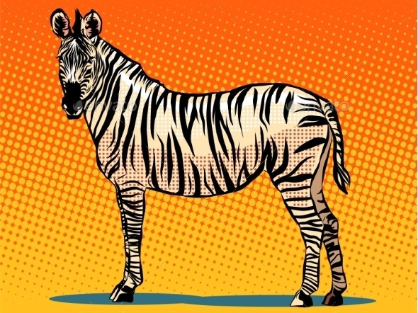 African Zebra Animal - Animals Characters