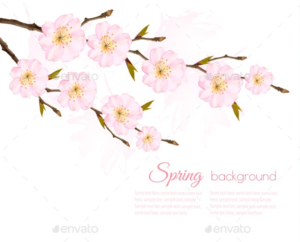 Spring Background with a Sakura Branch - Flowers & Plants Nature