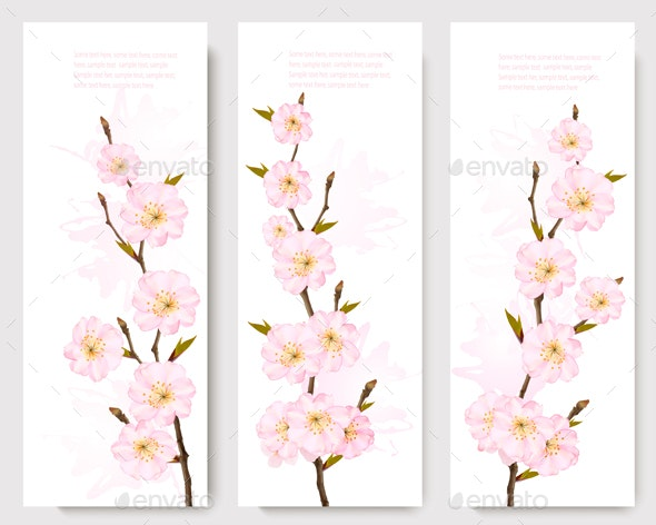 Spring Nature Banners with Blossoming Sakura  - Flowers & Plants Nature