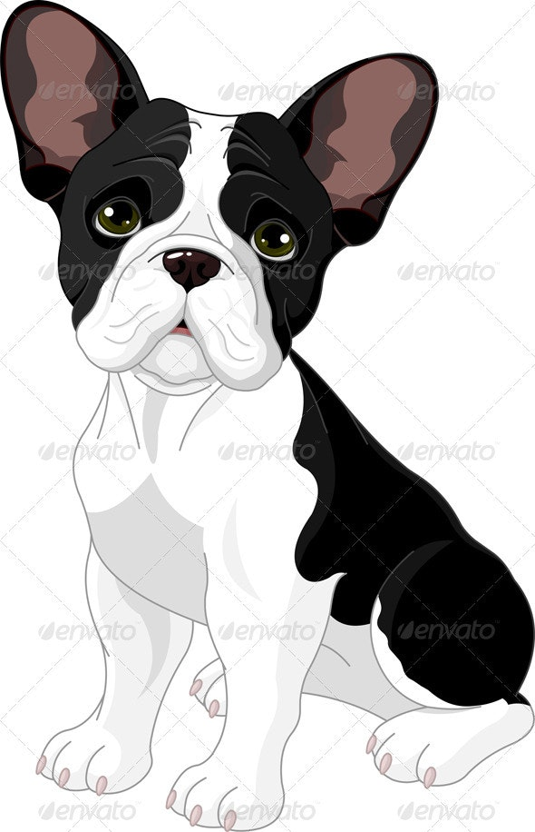 French bulldog - Animals Characters