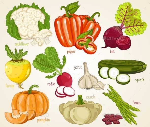 Vegetables Mix - Food Objects