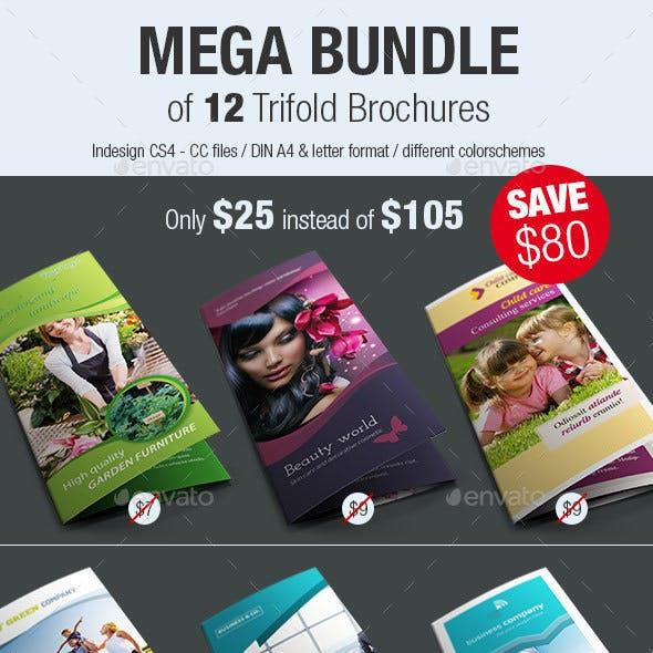 Bundle of 12 Trifold Brochures