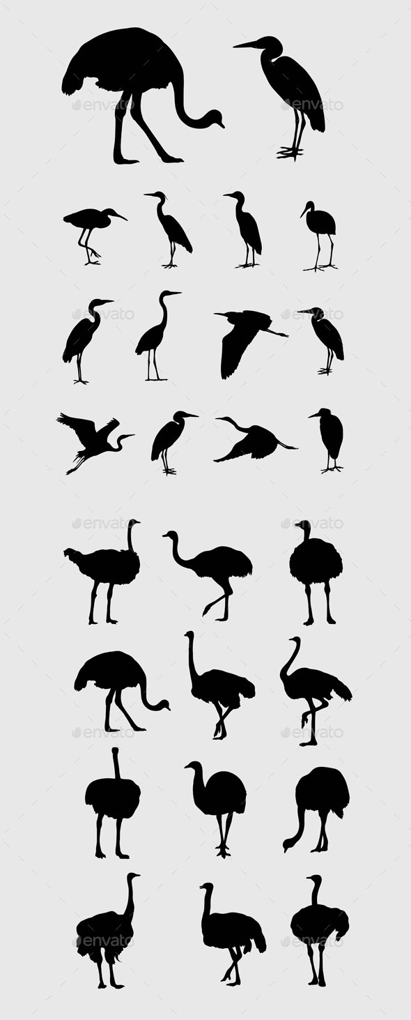 Heron and Ostrich Silhouettes - Animals Characters