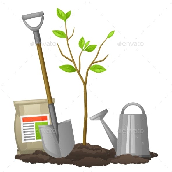 Seedling Fruit Tree with Shovel, Fertilizers and Water