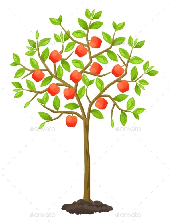 Fruit Tree with Apples - Flowers & Plants Nature