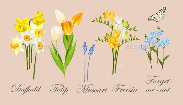Collection of Spring Flowers - Flowers & Plants Nature