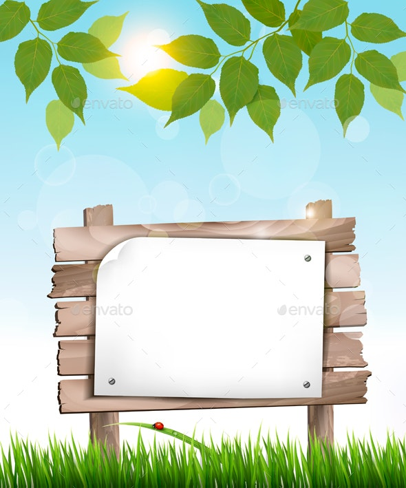 Natural Background with Leaves and a Wooden Sign - Landscapes Nature