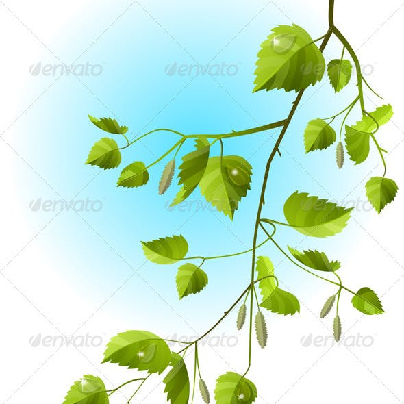 Realistic vector branch with green leaves