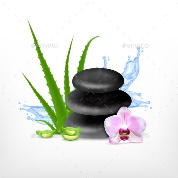 Spa Stone with Aloe - Health/Medicine Conceptual
