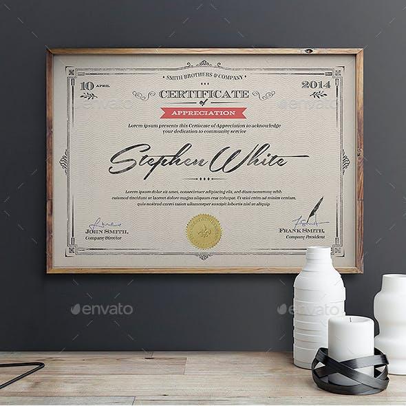 Multipurpose Certificates III