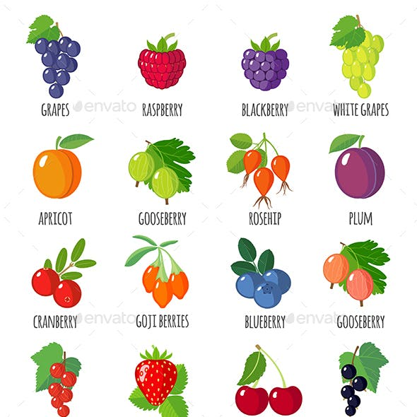 Set of Berries Icons with their Name