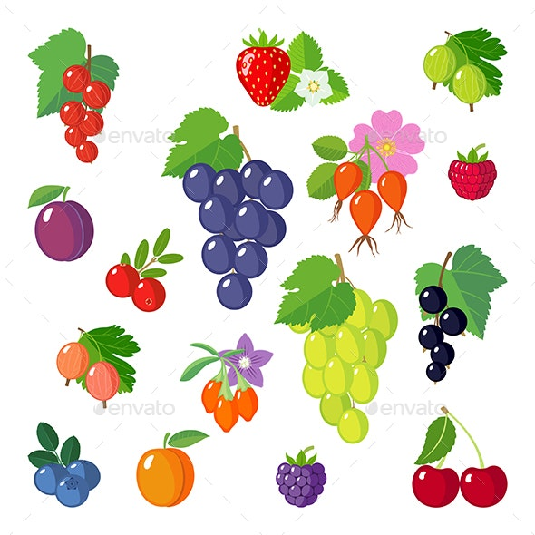 Set of Berries Icons - Food Objects