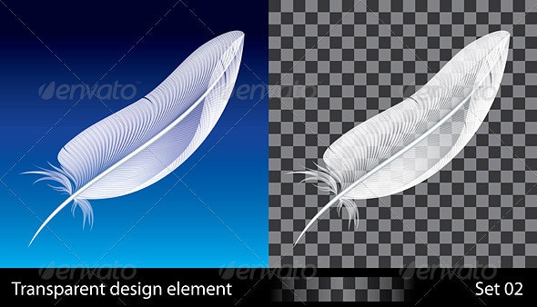Feather - Organic Objects Objects